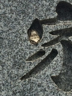 墓石に彫られた文字の中でくつろぐカエルの写真・画像素材[1179009]