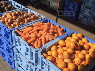 詰め放題の野菜とみかんの写真・画像素材[2493420]