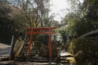 鳥居と石碑の写真・画像素材[3026569]