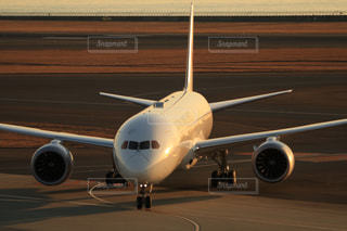夕暮れの空港の写真・画像素材[2924212]
