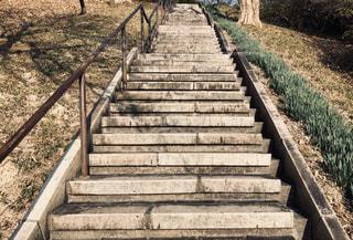 階段はまだ続くの写真・画像素材[2863700]
