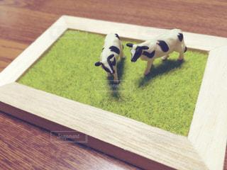 木製のテーブルの上に座っている犬の写真・画像素材[2861565]