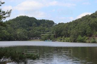 木に囲まれた水域の写真・画像素材[2863304]