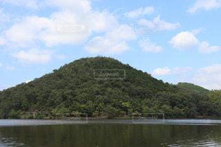 木に囲まれた水域の写真・画像素材[2863308]