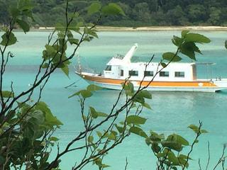 水域の小さなボートの写真・画像素材[2865327]