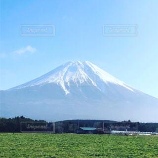 富士山を背景にした大きな緑の畑の写真・画像素材[2866101]