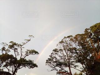 空の虹の写真・画像素材[2868676]