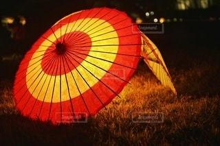 和傘の写真・画像素材[2881894]
