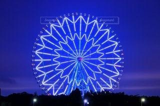 葛西臨海公園の写真・画像素材[2917670]