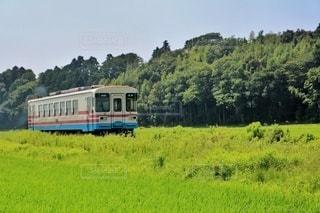 緑豊かな畑を通る列車の写真・画像素材[2924726]