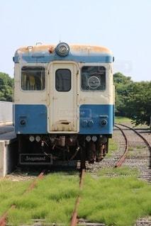 草の上に座っている青と白の列車の写真・画像素材[2924735]