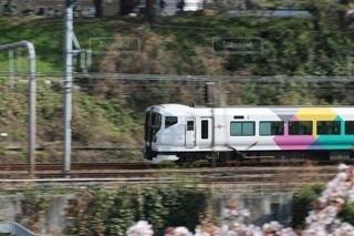 森の近くの列車の線路を走行する列車の写真・画像素材[2931828]