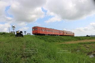 緑豊かな畑を通る列車の写真・画像素材[2956487]