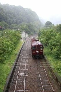 森の近くで列車の線路を下って移動する列車の写真・画像素材[3025198]