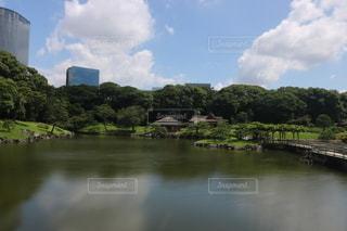 浜離宮恩賜庭園の写真・画像素材[3505345]