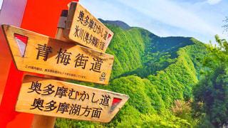山の標識の写真・画像素材[2884513]