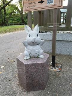 ウサギのお相撲さんの写真・画像素材[2886235]