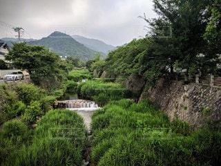 兵庫県芦屋市・芦屋川の風景の写真・画像素材[2887609]