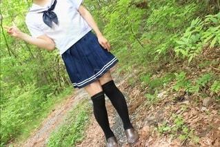 お散歩森林浴の写真・画像素材[4465381]