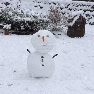 雪だるまの写真・画像素材[2888406]