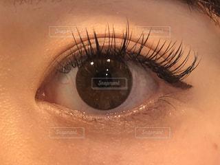メイクをした目の写真・画像素材[2893653]