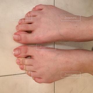 両脚の写真・画像素材[4874653]