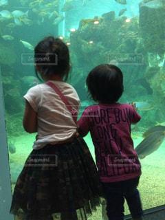 水族館ではしゃぐ2人の写真・画像素材[2896478]