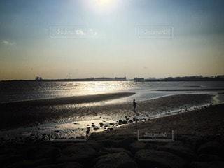 海辺 - No.111291