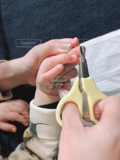 子どもの爪切りの写真・画像素材[2905687]