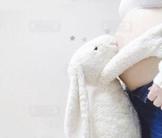 臨月のお腹とぬいぐるみの写真・画像素材[2903618]