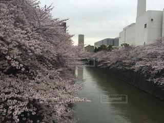 風景 - No.111664