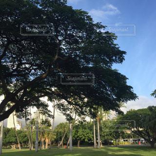 公園 - No.357058