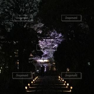 夜の写真・画像素材[408569]