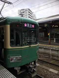 江ノ島電車  桜使用🌸の写真・画像素材[1134758]