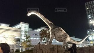 福井恐竜博物館の写真・画像素材[3065959]