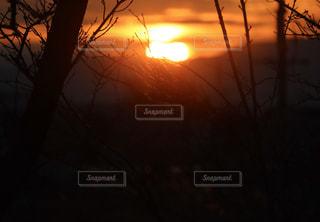 夕日の写真・画像素材[2919704]