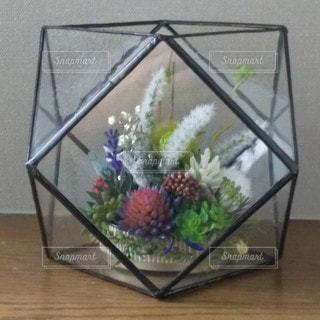 ステンドグラス内に観葉植物の写真・画像素材[3417093]