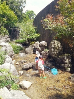 川でカニを探す姉弟の写真・画像素材[2953627]