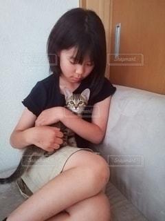 子猫を抱っこする少女の写真・画像素材[3296461]