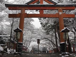 雪に覆われた日吉大社の写真・画像素材[2938500]
