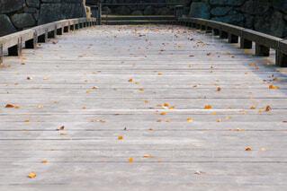 枯葉の舞う木橋の写真・画像素材[4072729]