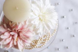 花のクローズアップの写真・画像素材[2956165]