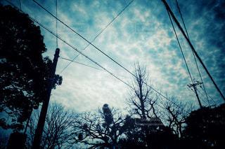 不気味な空の写真・画像素材[2997276]