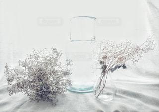 ガラスの花瓶の写真・画像素材[3326769]