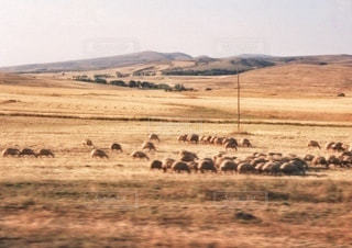 トルコの田舎風景の写真・画像素材[3401068]