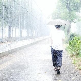 夏の雨の日の写真・画像素材[3619226]