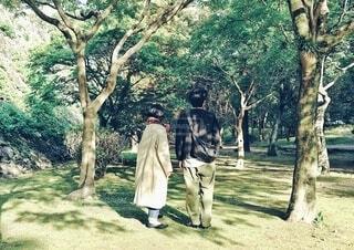 木漏れ日の中に立つふたりの後ろ姿の写真・画像素材[3852628]