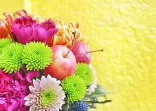 色鮮やかな壁に映える花の写真・画像素材[4045524]