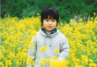 子どもの写真・画像素材[130589]