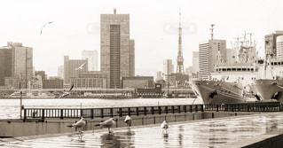 東京タワー - No.394700